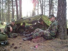 ed89a25a9d5db2c1acbb939676bb5908--th-mountain-division-survival-shelter