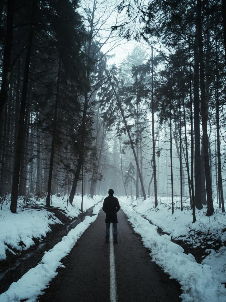 person-in-black-jacket-walking-on-snow-covered-pathway-3494648